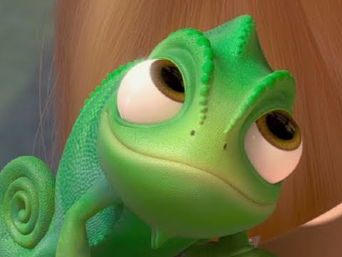 Cute Baby Lizards Wallpaper Tangled Quot Lost Pascal Quot Video Official Hd Youtube