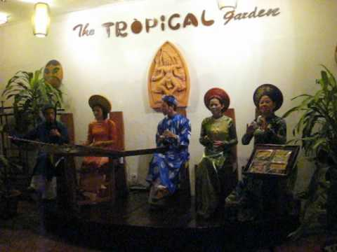 The Tropical Garden Band