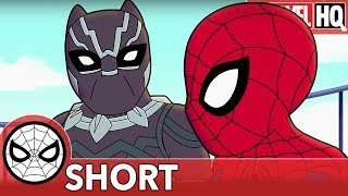 We Need Spidey & Black Panther Right MEOW! | Marvel Super Hero Adventures ″Family Friendly″ | SHORT