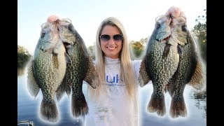 Fishing for Crappie with LIVE MINNOWS!!