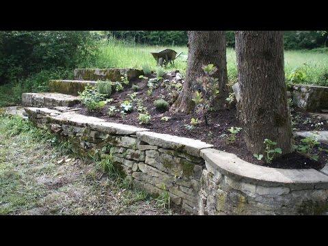 Mon jardin aromatique + le zonage en permaculture