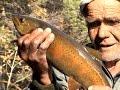 Осенняя рыбалка в горах Прибайкалья. За ленком по Турокче.