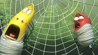 LARVA - SPIDER TRAP | For Kids | Larva Cartoon | Mini cartoon Movie | LARVA Official