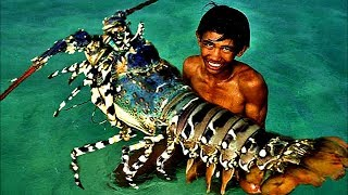 Top 5 Biggest Lobsters Ever Caught