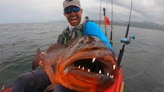 Giant Snapper with HUGE Teeth | Field Trips Panama