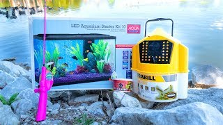 MICRO Fishing for New PET FISH!!!