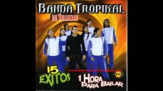 Banda Tropikal 15 Exitos
