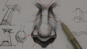 realistic draw pen ink drawing tutorials nose drawings tutorial techniques simple noses sketching alphonso dunn portraits ear pens pencil inkt