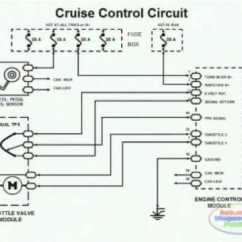 98 Civic Fuse Box Diagram Trailer Brake Wiring Cruise Control & - Youtube