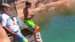Kid Catches Giant Catfish!