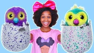 Download RECKLESS JOKER SHASHA Crushes Bad Baby Hatchimal Toy - Shiloh Toys Under Car! - Onyx Kids Video