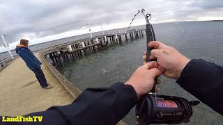 Western Port Bay Monster - Fishing