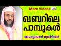 ഖബറിനകത്തെ 99 പാമ്പുകൾ... Islamic Speech In Malayalam E P Abubacker Musliyar New 2014