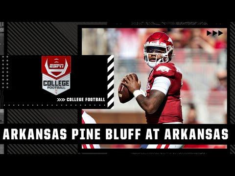 Arkansas-Pine Bluff Golden Lions vs. Arkansas Razorbacks: Full Highlights