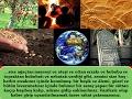 Risale-i Nur Dersi, Size ağaçtan meyveyi ve ateşi ve ottan erzakı ve hububu ve topraktan...