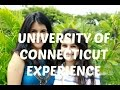 College Experience - University of Connecticut