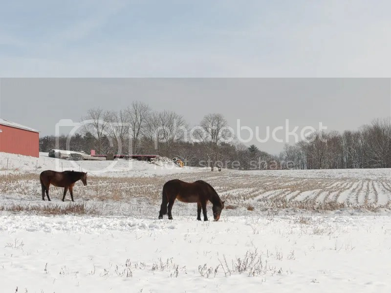 Winter Scene, Butler Valley