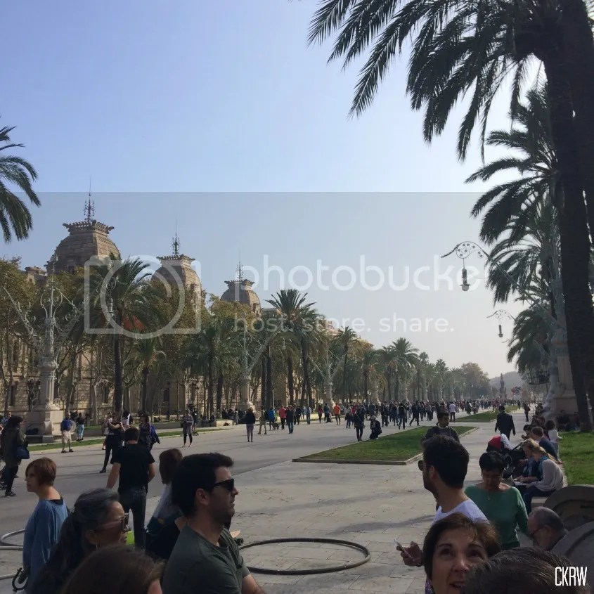photo Spain3_zps2ynk8gr3.jpg