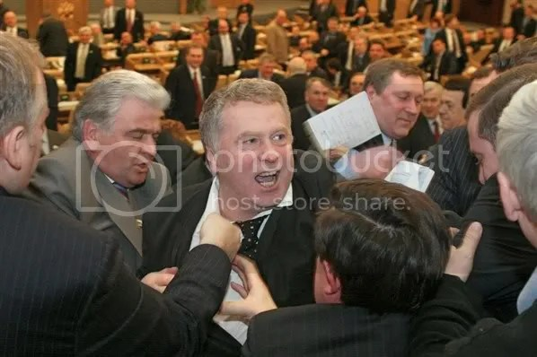 Duma fistfight