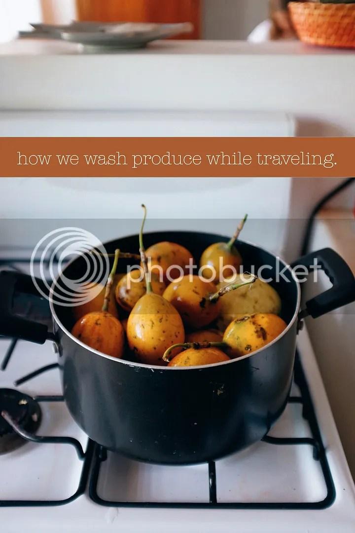 photo how to wash produce while traveling_zpsegmsytus.jpg