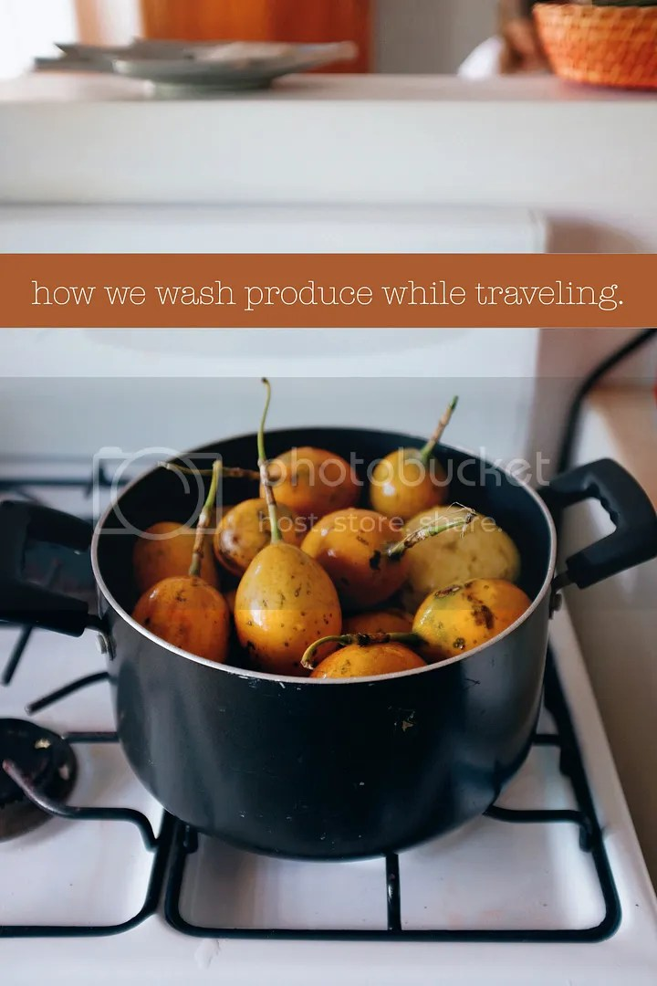 photo how to wash produce while traveling_zpsegmsytus.jpg