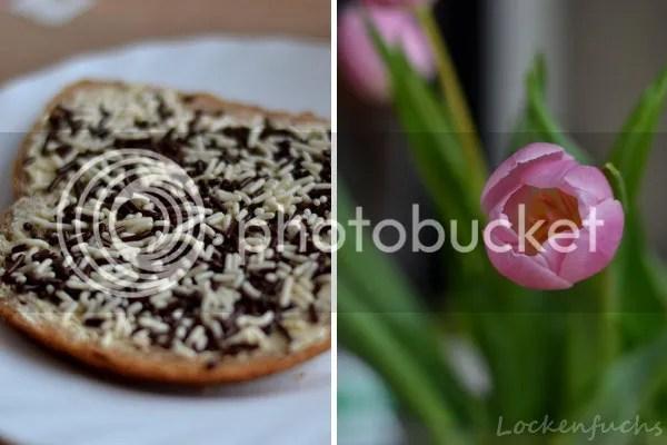 Frühstück auf holländisch