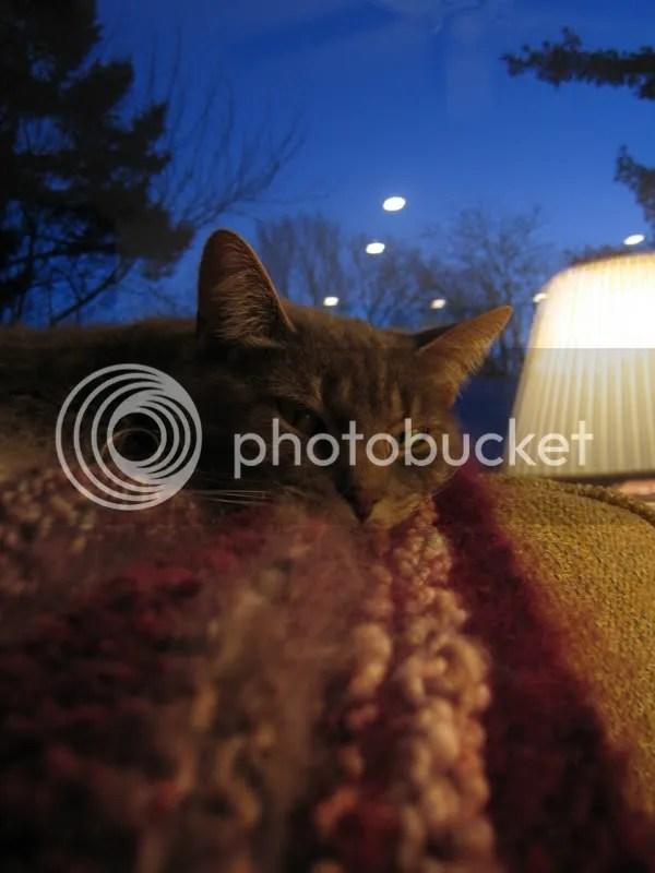 Maddie on the blanket