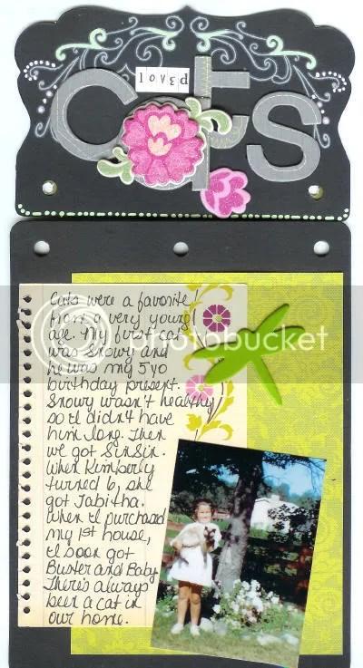 IHA Page 8