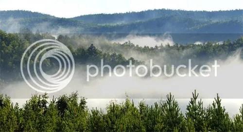 photo t427641_zps49d32f03.jpg