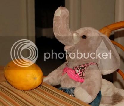 Ella & The Papaya