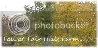 Fall At Fair Hills Farm...