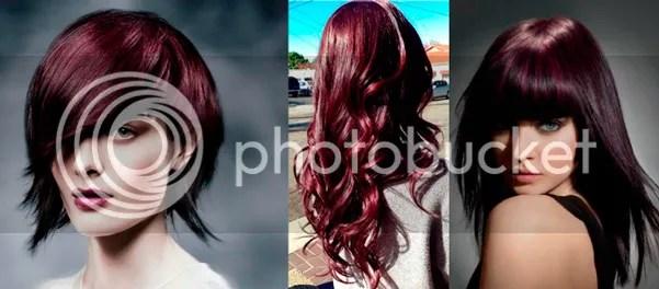 Aubergine-Hair