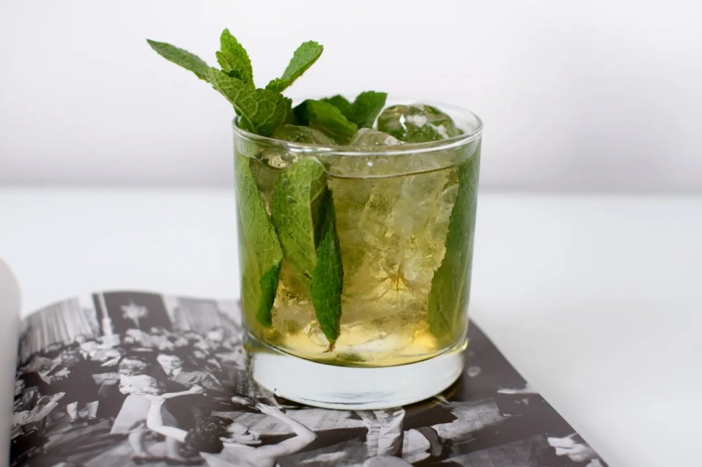 Mint Julep Cocktail Recipe | The LDN Diaries