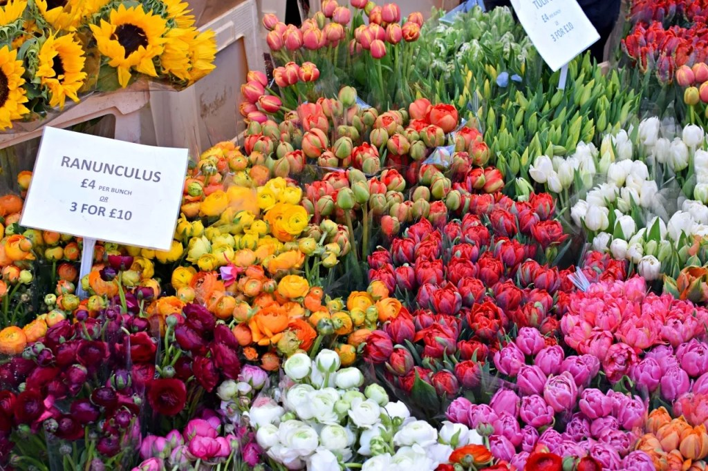 rannuculus flowers at columbia road flower market