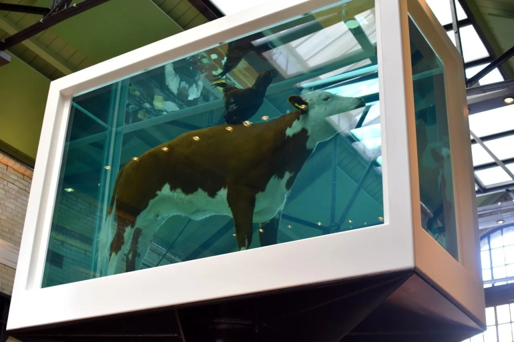 Damien Hirst cow at Tramshed Shoreditch