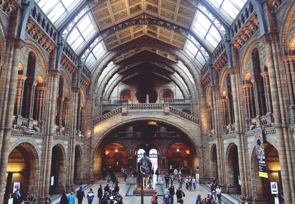 Hintze Hall Natural History Museum