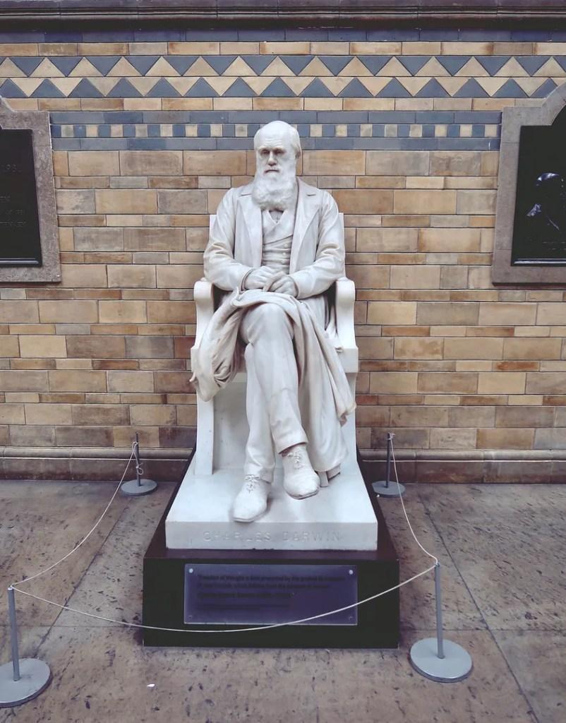 Darwin statue national history museum
