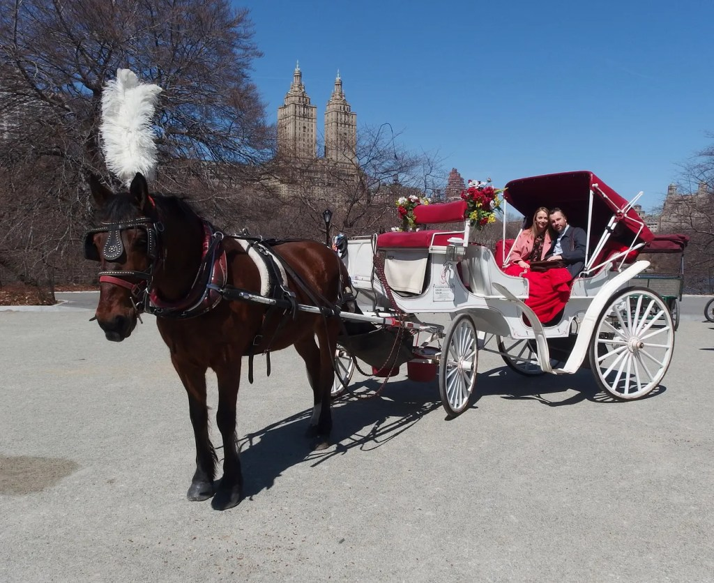 Horse and Carriage Tour Central Park New York