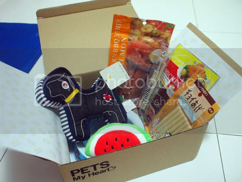 pets my heart dog box