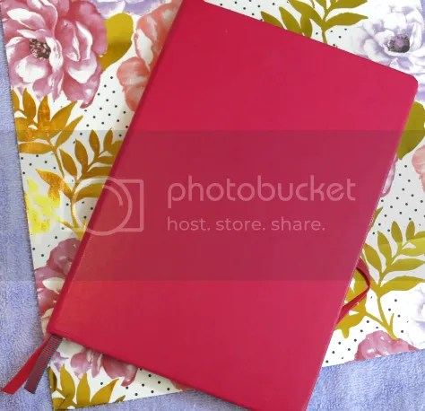 photo Raspberry Notebook_zpsyhs6rdoi.png