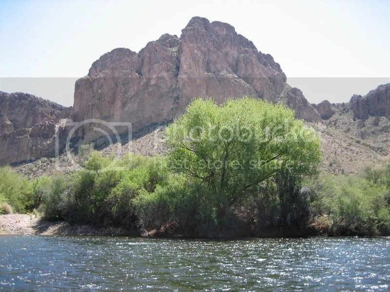Lower Salt AZ