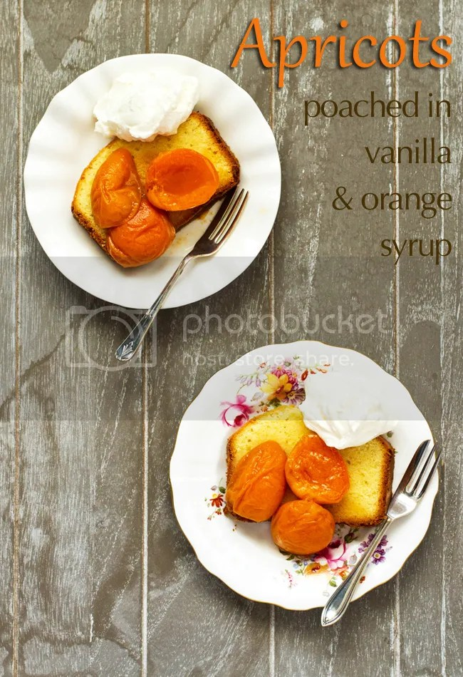 Apricots poached in vanilla-orange syrup