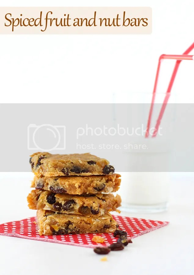 Spiced fruit and nut bars