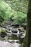 photo killarney_national_park_county_kerry_ireland_01_zps0660b16f.jpg
