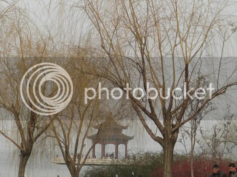photo CIMG4402s_zps643927b6.jpg