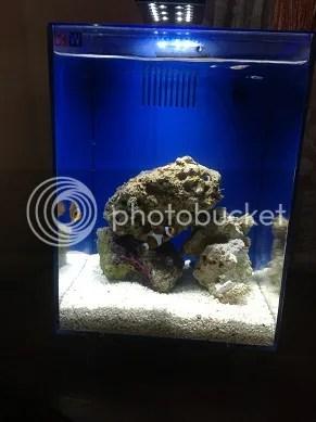 Want To Sell Nano Kit Akuarium Complete Set Murahnyer  CariGold Forum