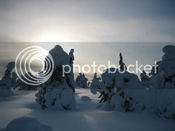 Reistip: Lapland Winter Wonderland