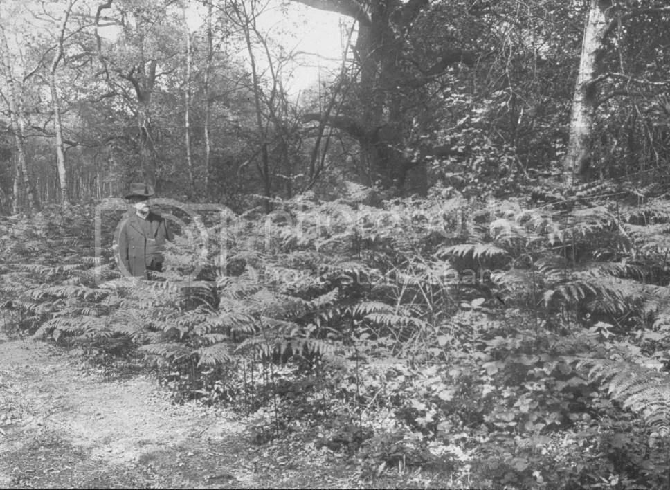 Photograph of the Bethlem Chaplain on the wooded site, 1920s