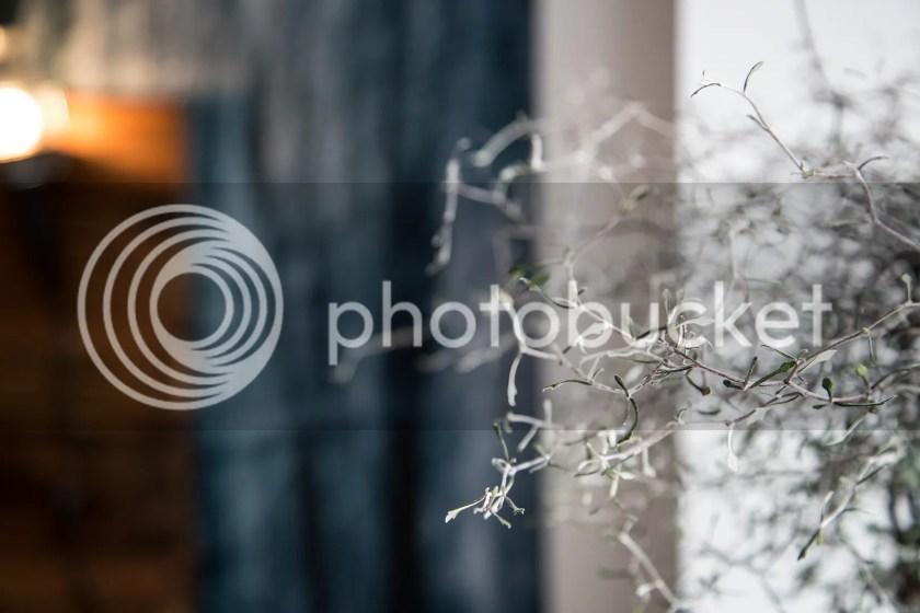 photo IMG_1971_zps62e430b5.jpg