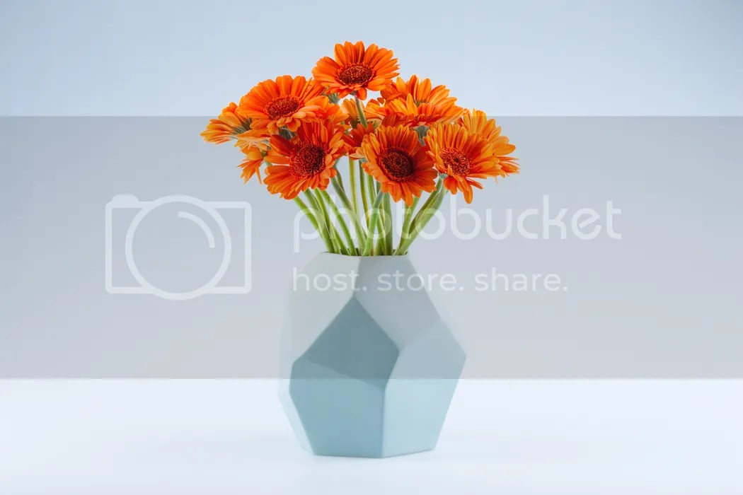 photo vase-0091_zps2d35bfec.jpg